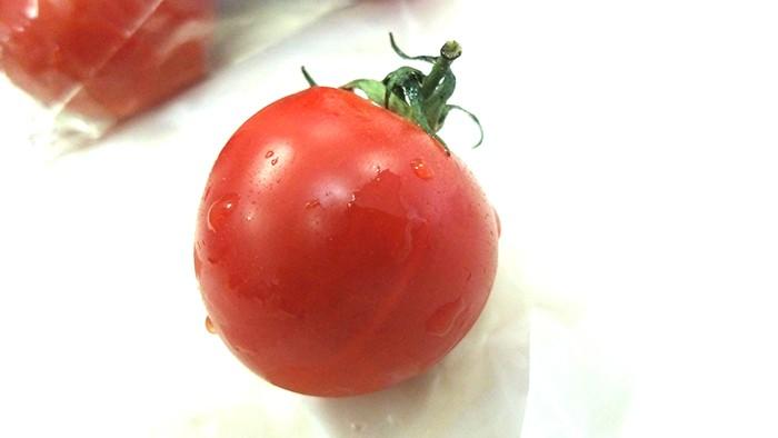 トマトダイエット「その効果に私は屈しない」ダイエットブログ2日目