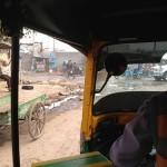 インド旅行記「紫ニットに追いかけられる危険なデリー」